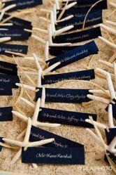 60 cute starfish beach wedding decoration 42 Beach Theme Centerpieces, Beach Wedding Decorations, Beach Wedding Favors, Beach Wedding Invitations, Beach Themes, Starfish, Hair Accessories, Cute, Crafts