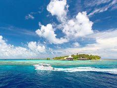 Maldives Luxury Resorts - Baros Maldives #bmrtg #Maldives #TravelStoke #bandosmaldives #indianocean #AsiaTravel #WorldTravelGuide #LalumiTravels #warrenjc #sunnysideoflife #maldivity #travel #traveling #vacation #dive #surfing #adventureculture #instagood #india #holiday #lagoon #beach #instapassport #instatraveling #mytravelgram #travelgram #igtravel #CrystalClearWater #LonelyPlant #adventureculture