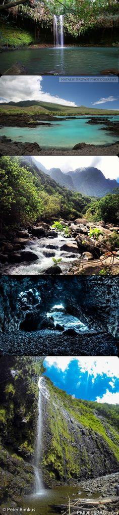 Top 10 Free Things to Do on Maui! http://www.prideofmaui.com/blog/activities/top-10-free-things-to-do-on-maui.html