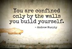 You are confined only by the walls you build yourself. - Andrew Murphy