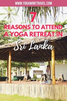 Yogawinetravel.com: 7 Reasons Why You Should Attend a Yoga Retreat in Sri Lanka. Traveling and taking part in a Yoga retreat is a wonderful way to fill your cup and enhance wellness, explore new parts of the world, be a part of the international Yoga community and immerse yourself in Yoga. Read on for why you should head to Sri Lanka for your next Yoga retreat holiday!