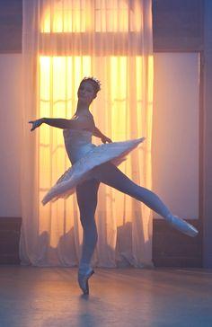 Tara Webster. ✯ Ballet beautie, sur les pointes ! ✯