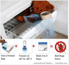 Bed Bugs Freezer Clothes
