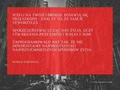 Witold Wójtowicz cytat o przeszkodach