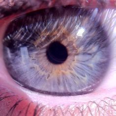 We love up-close and personal eyeballs!