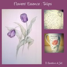 Flower Essence: Tulips. Essenze dei Fiori: il Tulipano. Acquerello, tazza di ceramica dipinta a mano e messaggio del fiore. Watercolors, hand painted ceramic cup and flower meaning.