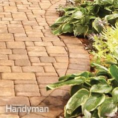 Brick Paver Walkways  Patio - Read about the type of sand, sand additive and stabilizing sealant you need to do this RIGHT!