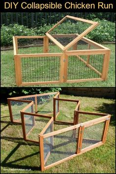 Do you need a collapsible chicken run in your backyard? #petchickens #chickencoopdiy