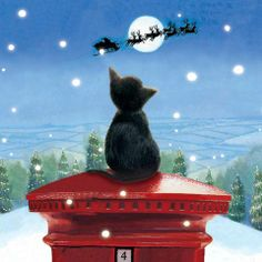BABBO NATALE  cat <3
