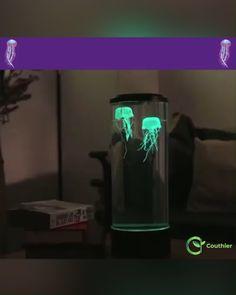 Best Indoor Garden Ideas for 2020 - Modern Jellyfish Lamp, Jellyfish Aquarium, Jellyfish Facts, Jellyfish Drawing, Jellyfish Decorations, Jellyfish Painting, Watermelon Smoothies, Mood Lamps, Aesthetic Bedroom