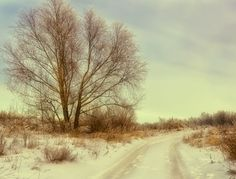 On the winter road by Natalia Flora on 500px