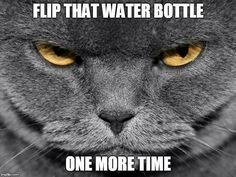 Flip that water bottle one more time...