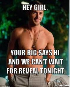 big little reveal - Google Search