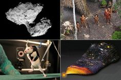 Wonderful 10 Major Scientific Events of 2014 Check more at http://oddstuffmagazine.com/10-major-scientific-events-of-2014.html