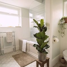 Before and after pictures of our UK house bathroom renovation. Looking for ideas for your bathroom renovation? Come on in - what to expect, inspiration, product sourcing and more. 1930s Bathroom, Bathroom Cost, Retro Bathrooms, Bathroom Plants, Family Bathroom, Small Bathroom, Bathroom Ideas, Bathroom Inspo, Bathroom Colors