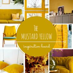 Mustard yellow color, inspiration board, mustard wall • the Round Button