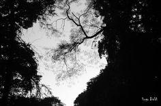 Reflexões horizontais ao ar livre são momentos necessários para por pensamentos abstratos em ordem. IMO - HCB