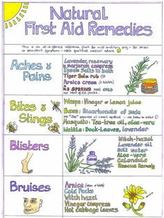 Natural first aid remedies - nice idea for health class!