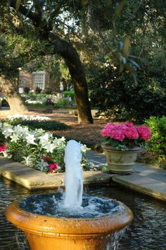 Bellingrath Gardens, AL, USA / The property was originally a fishing camp for Mr. Bellingrath and was transformed in the late 1920s into a spectacular Garden estate.