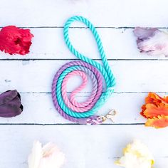 3 Coloured Ombre Dog leash, Puppy Leash, Rope Dog Leash, Ombre Rope Leash Pet Accessories, Dog Toys, Cat Toys, Pet Tricks