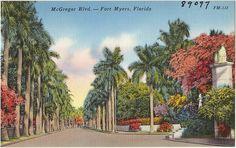 Historic Southwest Florida Postcard