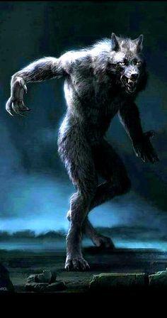 Mythical Creatures Art, Fantasy Creatures, Werewolf Art, Fantasy Portraits, Dnd Art, Wolf Wallpaper, World Of Darkness, Monster Design, Cryptozoology