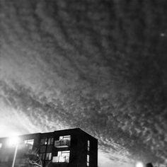 #art #igers #worldwide_shot #MKexplore #visualsoflife #instagood #sun #world_shotz #liveauthentic #vscoaward #vscogood #phototag_it #huffpostgram #shotaward #ig_europe #ig_worldclub #incredible_masterpiece #vscocam #justgoshoot #way2ill #bestofvsco #lifeofadventure #illgrammers #copenhagen #denmark #visitcopenhagen #instagood #mxkbh #iphonephotography #ippa #iphone
