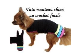 TUTO MANTEAU CHIEN CROCHET TOUTES TAILLES Dog Clothing knitting crochet wiggly all size - YouTube Pull Crochet, Knit Crochet, Dog Belt, Chiwawa, Dog Jumpers, Dog Sweaters, Crochet Videos, Boy Outfits, Knitting