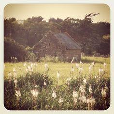 Un petit air de Petite Maison dans la prairie :)