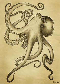 Alex: i really like this aesthetic. Do you think it would look good still if there wasn't so much shading? Images For > Cool Drawings Of Octopus Octopus Drawing, Octopus Artwork, Octopus Print, Squid Drawing, Octopus Squid, Kraken Tattoo, Tentacle Tattoo, Squid Tattoo, Steampunk Octopus