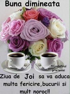 Elena Ilie - Google+ Good Morning, Rose, Flowers, Plants, Thursday, Google, Places, Cold, Buen Dia