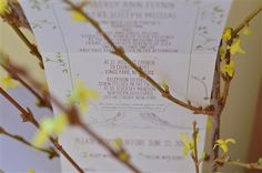 Our Tree Invitations on our popular Send n Seal format.