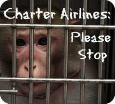 Do not transport monkeys