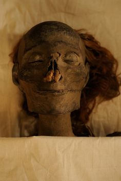 Beautiful & weird Egyptian mummy, not sure of  the identity though...