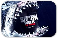 """Discovery Channel's Twitter strategy created a social media """"frenzy"""" around Shark Week."""