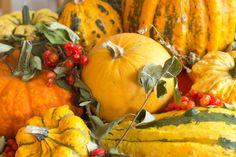 Pumpkin, Vegetables, Food, Carrots, Interesting Facts, Berries, Plants, Pumpkins, Essen