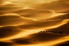 TripBucket - We want You to DREAM BIG! | Dream: See Erg Chebbi, Morocco