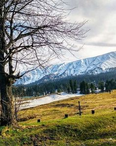 """""""Even in winter an isolated patch of snow has a special quality."""" - Andy Goldsworthy  Gulmarg Kashmir India.  #incredibleindia  #snow #winter #travel #instago #travelindia  #thingstodoinindia #thingstoseeinindia #indian #nikon #lonelyplanet #lonelyplan https://t.co/iqW88umxEj https://t.co/AaAfxQKElU"""
