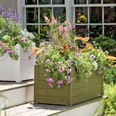 Terrazza Trough Planter, self watering