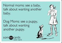 True Story!! I want another puppy!!