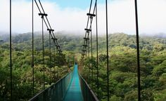 """Costa Rica. We stayed in a tree house in the rainforest, had daily visits from monkeys, visited an incredible wildlife sanctuary, had remote beaches all to ourselves, and went zip lining in La Fortuna. Oh, and did I mention the food?"" --Darcy Hartman (From: 26 Vacations of a Lifetime)"
