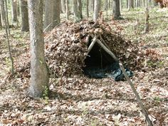 Evergreen Native American Survival Skills - The Apache Foot . Native American Songs, Native American Warrior, American Indian Art, Survival Shelter, Wilderness Survival, Shelter Design, Early Humans, Bushcraft Camping, Family Roots