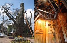 Conheça a incrível capela que fica dentro de um carvalho tão velho quanto a França