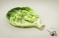 Gas-X: Cabbage Enjoy the foods you love with less gas. Advertising Agency: Saatchi&Saatchi, Toronto, Canada Executive Creative Directors: Brian Sheppard, Helen Pak Group Creative Director / Art Director: Joel Arbez Group Creative Director / Copywriter: Matt Antonello Photographer: Shanghoon, Westside Studios