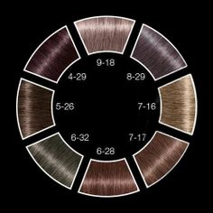 Schwarzkopf Professional IGORA Royal Metallics Color Wheel.