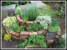"Example of an ""herb spiral"" - can be built using other stones. An herb spiral… Herb Spiral, Spiral Garden, Easy Garden, Big Garden, Cleveland Botanical Garden, Types Of Herbs, Herb Garden Design, Gardening For Beginners, Gardening Tips"