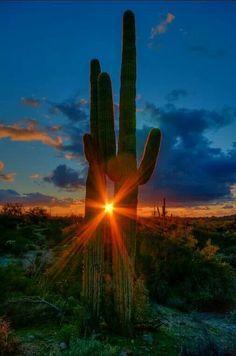 Taken by Russ Glindmeier for Arizona Highways magazine.