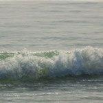 la ola, óleo sobre tabla, 26x100 cm.