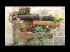 Como Hacer Jardines sobre Troncos de Arboles decorativos - Hogar Tv por Juan Gonzalo Angel - YouTube