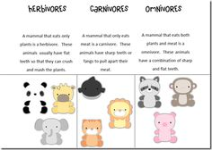 Super cute (free) printables-- Animal Eaters (Herbivore-Carnivore-Omnivore)